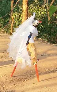 Stork stilt walking costume Malawi